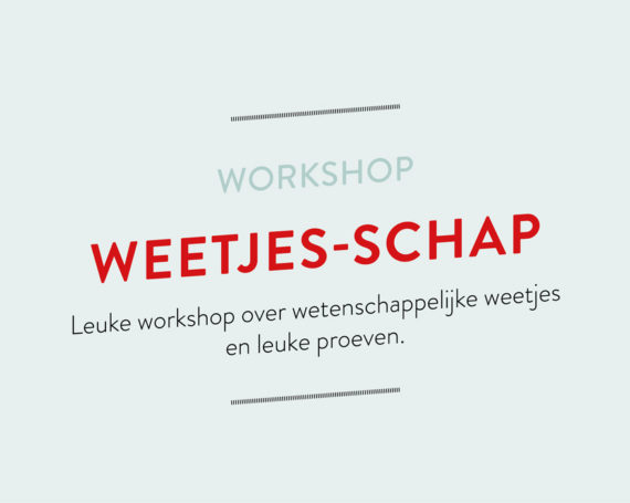 Workshop Weetjes-schap